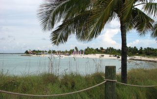 Nice picture of Castaway Cay beach